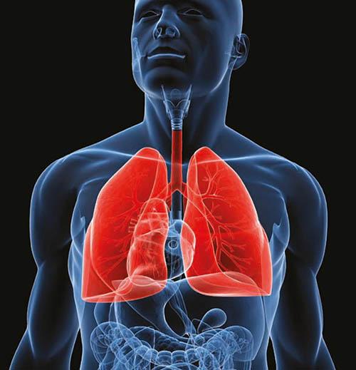 lungs_man_3.jpg