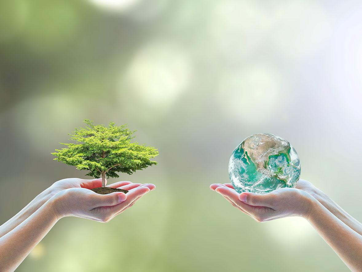 Environmental-awareness.jpg